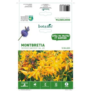 Montbretia orange 10 bulbes de calibre 6 à 8 – 2 m 402793
