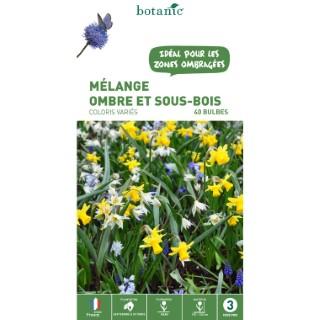 Mélange de bulbes pour ombre et sous-bois botanic® x 40 414607