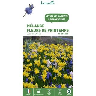 Mélange de bulbes premières fleurs du printemps botanic® x 40 414608