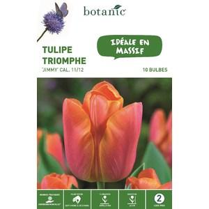 Bulbe tulipe triomphe jimmy orange botanic® x 10 414768