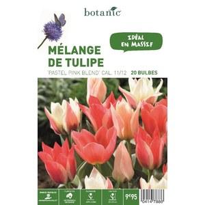 Mélange de bulbes tulipes pastel pink blend rose botanic® x 20 414788