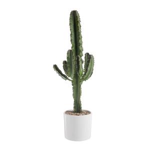 Euphorbia Érythrea en pot blanc émaillé H 300 x Ø 20 cm 415721
