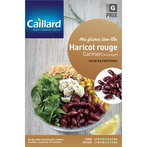 Graines de Haricot à écosser rouge Carmen en étui 419356