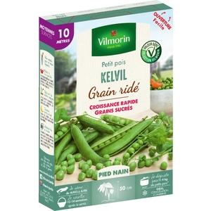 Graines de Pois nain Kelvil en étui 419408