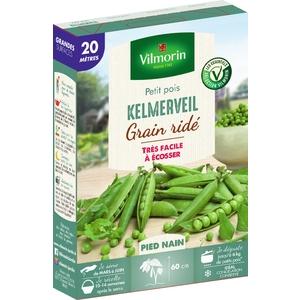 Graines de Pois nain Kelmerveil en étui 419411