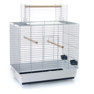 Cage oiseaux Sirocco 60 SAVIC