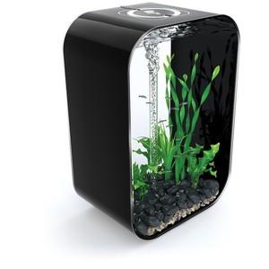 Aquarium BiOrb Life noir 60L 441470