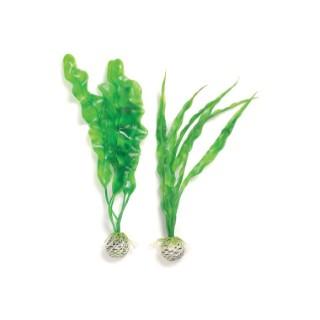 Décoration aquarium plantes vertes M x2 biOrb