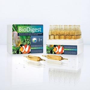 PRODIBIO - BioDigest 30 ampoules 442578