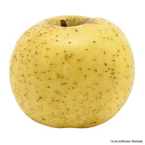 Pomme Chantecler - Prix au kg