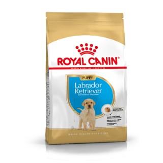 Croquette 12kg Labrador Retriever junior Royal Canin 483548