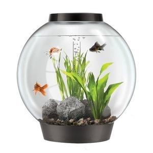 Aquarium BiOrb 60 L noir LED