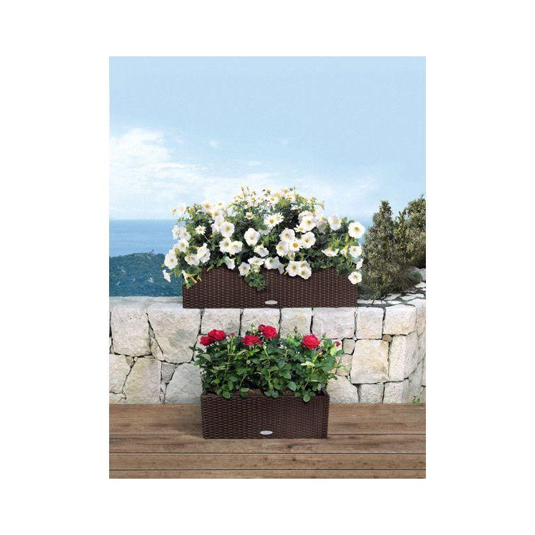 Bac 80cm Balconera kit complet blanc Lechuza L.80 x l.19 x H.19cm 40065