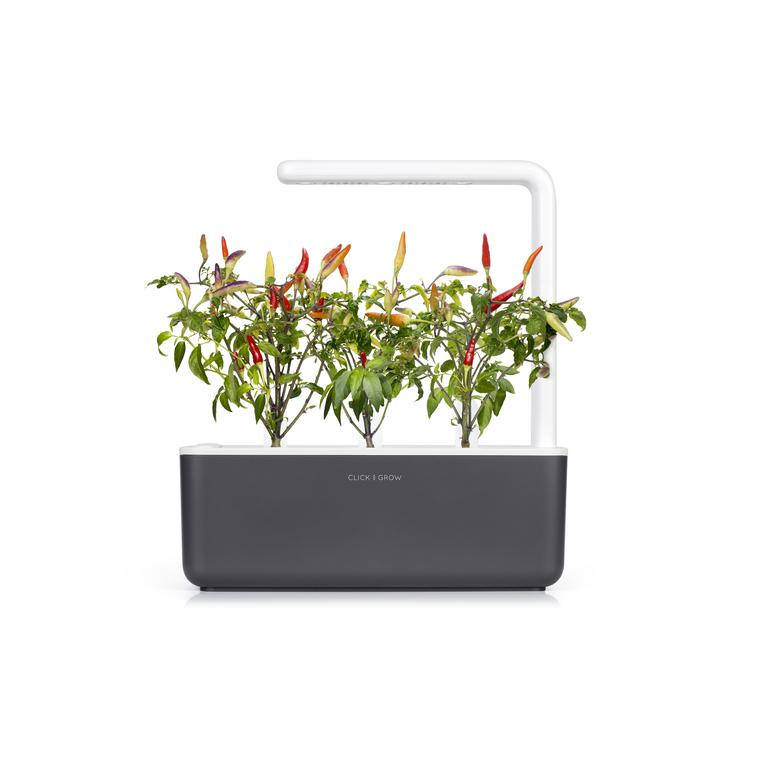 Lot de 3 recharges de graines de piment pour smart garden 402419