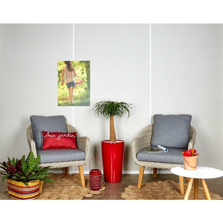 Beaucarnea tronc droit et son pot Rondo premium Ø32 rouge 405290