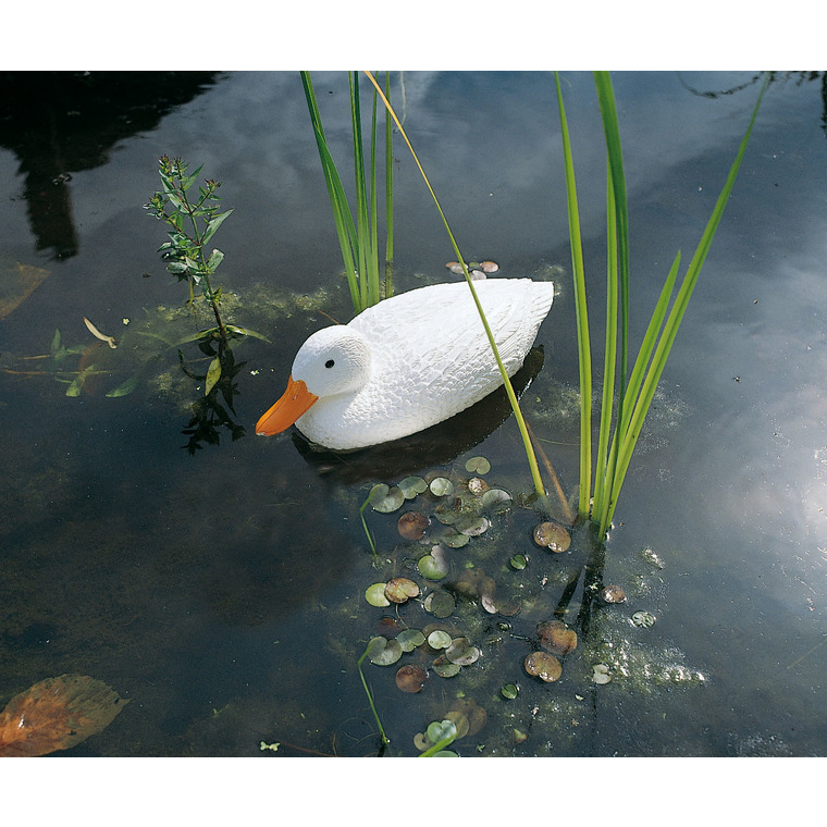 Canard sauvage blanc 38,5 cm 436545