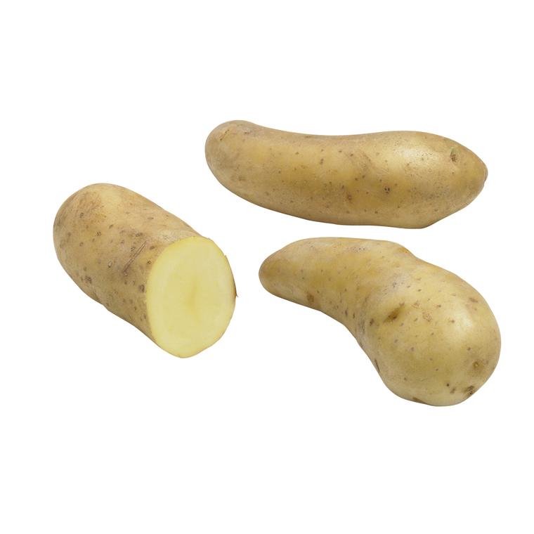 Pommes de terre Ratte calibre 25/32, 25 plants 436559