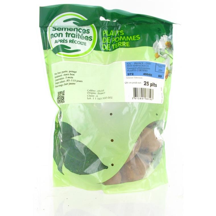 Pommes de terre Monalisa calibre 28/35, 25 plants 436564