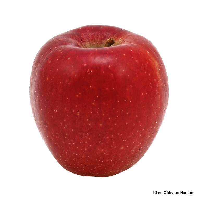 Pomme Braeburn - Prix au kg 441409