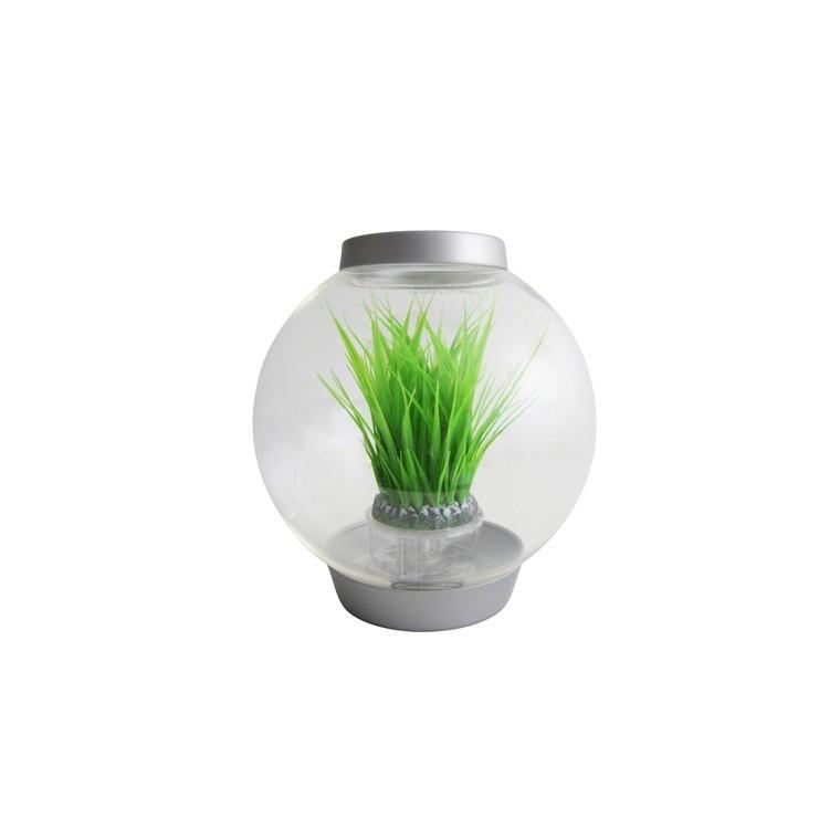 Déco Anneau d'herbe L biOrb - décoration aquarium 441511