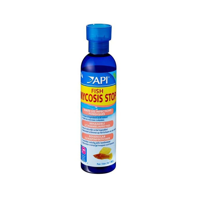 Fish Mycosis Stop API traitement antifongique poisson 118mL 476432