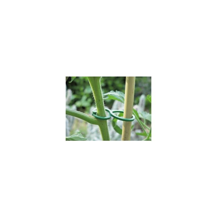 Clips pour légumes coloris vert 482612