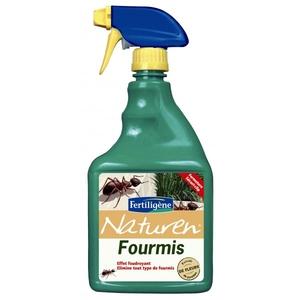 Anti fourmi