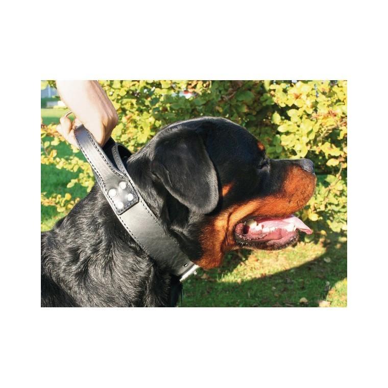 Collier chien 65cm double intervention 50mm 574524