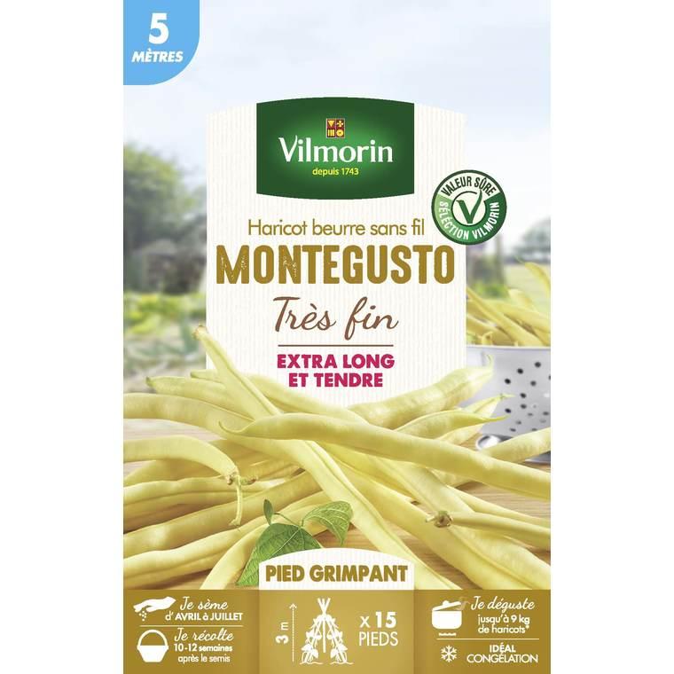 Sachet de graines de Haricot grimpant jaune Monte Gusto