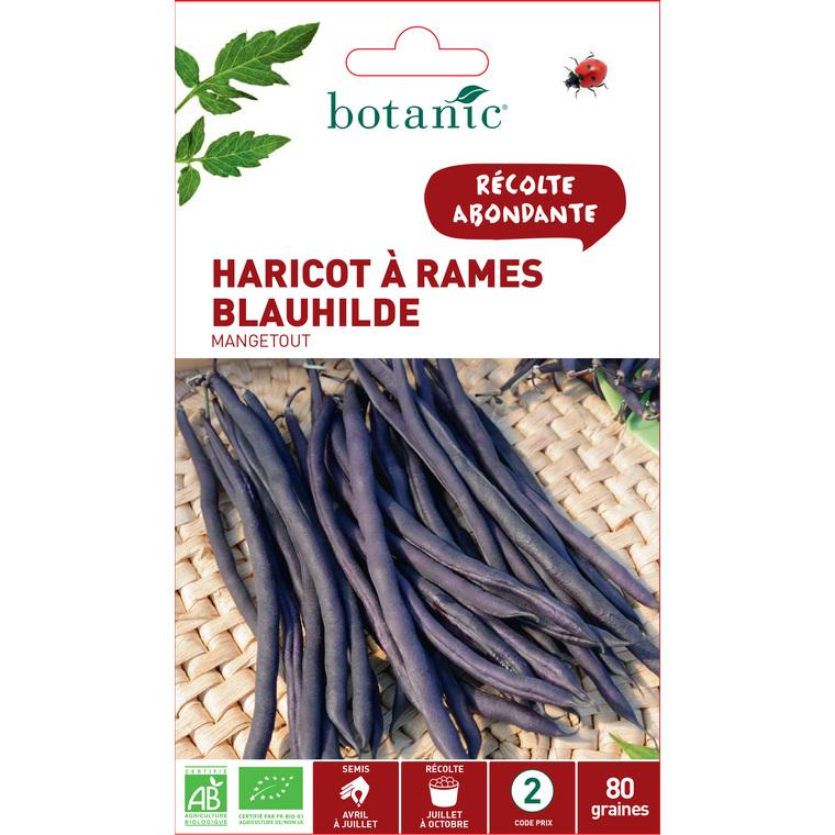Sachet Haricot à rames violet blauhilde mangetout bio 80 graines violet