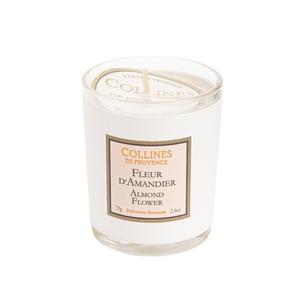 Bougie blanche parfumée Fleurs d'Amandier 75 g 610925
