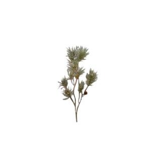 Branche de pin avec pommes de pin vert et or H 83 cm