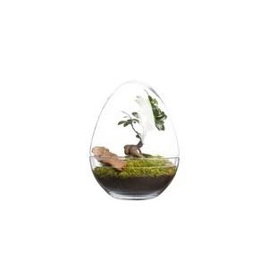 Terrarium diplo Bulle de Nature taille M Ø 20 x h 26 cm