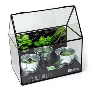 Mini serre à châssis noir pour Aromates Bio à semer 25x25x15 cm