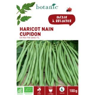Étuis Haricot nain cupidon extra-fin sans fil bio 100 g. vert 657528