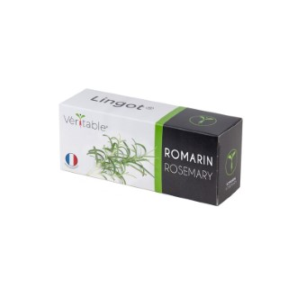 Lingot Romarin Bio 663294