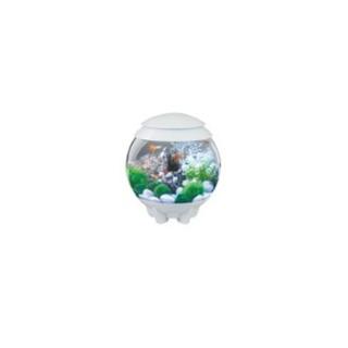 Aquarium Biorb Halo 15 L blanc avec éclairage MCR 16 couleurs 667078
