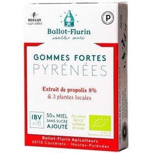 Gommes fortes des Pyrénées boîte 30 g rouge 675006