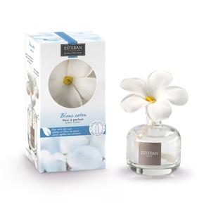 Fleur à Parfum + Recharge Blanc Coton 75 ml