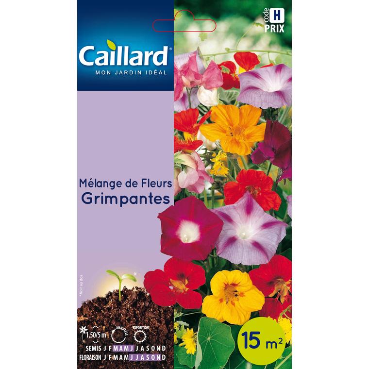 Sachet Mélange de fleurs grimpantes multicolore 657543