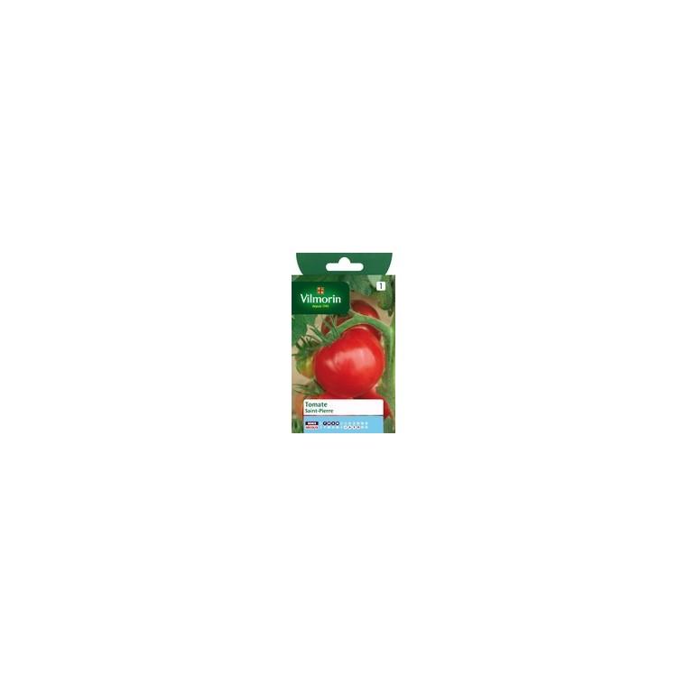 Tomate saint pierre 782834