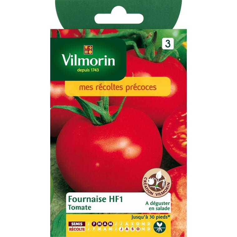 Tomate fournaise HF1 782835