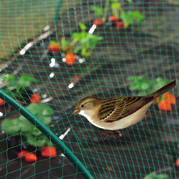 Filet de protection anti-oiseaux coloris vert 5x10 m 784618