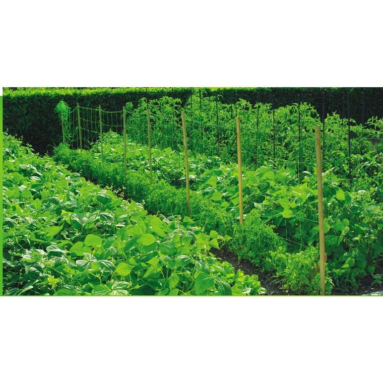 Filet à ramer coloris vert 2x5 m 784621