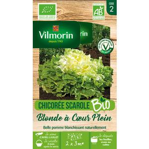 Sachet de graines de Chicorée scarole blonde à cœur plein Bio 915605