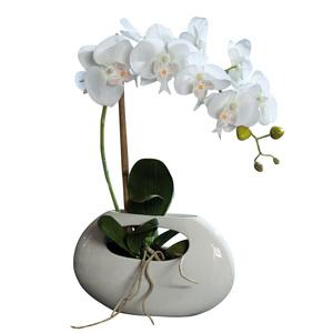 Orchidée Phalaeno 43 cm crème en vase céramique 976180