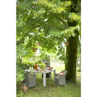 Ensemble repas Inspiration : 1 table et 4 fauteuils