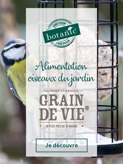 mdd-grain-de-vie-botanic