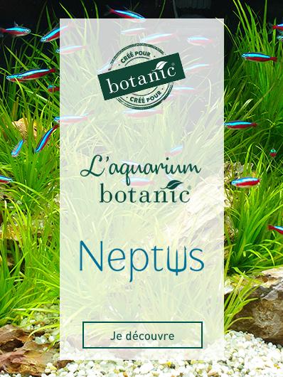 neptus-botanic
