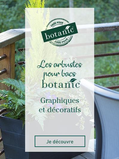 arbustes-bacs-botanic